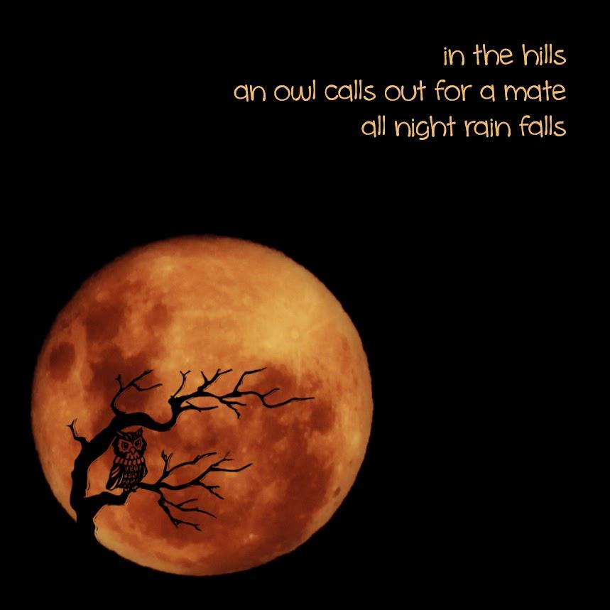 All night rain falls
