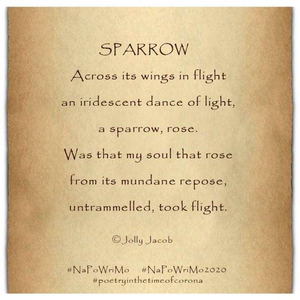 Sparrow poem