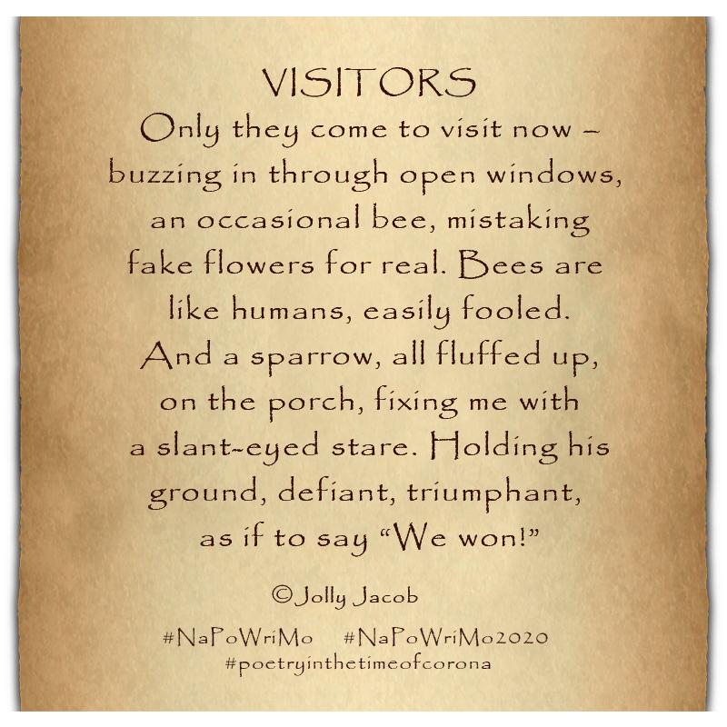 Justjoyfulness - Visitors